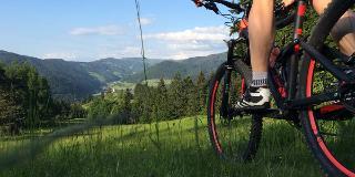 Mountainbiken im Schwarzwald / Urheber: Original Landreisen AG / Rechteinhaber: © Original Landreisen AG