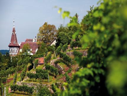 Stuttgarter Stäffelestour - Trepp auf Trepp ab im Süden