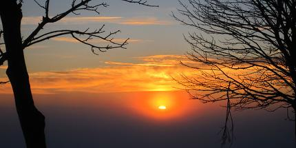 Wanderung: Wetterbuchen-Exkursion zum Sonnenuntergang