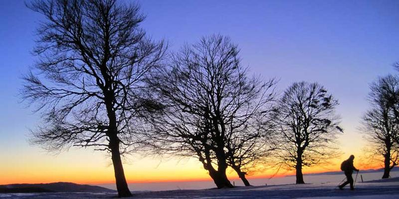 Schneeschuhwanderung: Wetterbuchen-Exkursion zum Sonnenuntergang