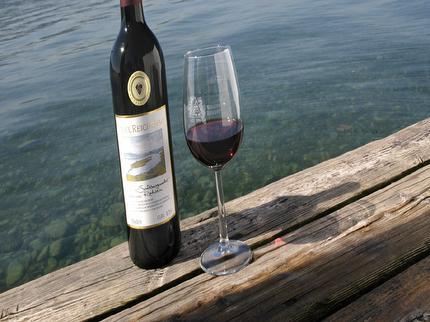Kulinarische Wanderung in vier Gängen über die Insel Reichenau