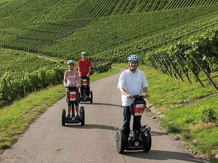 SEGWAY TOUR THROUGH THE VINEYARDS