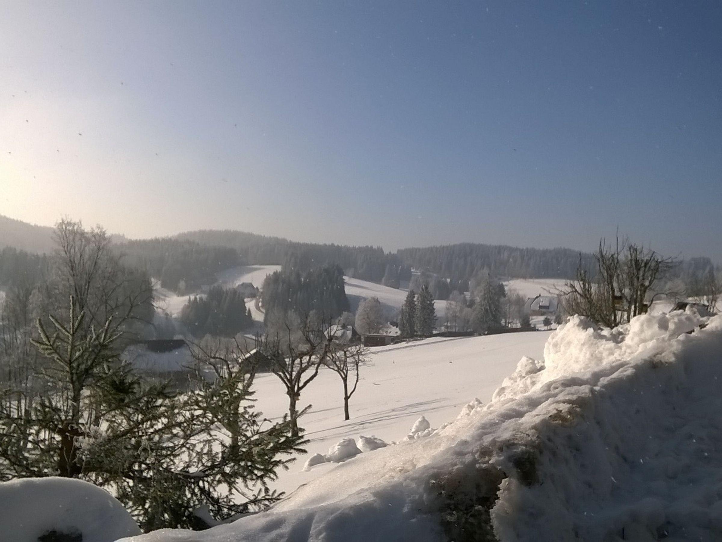 Holiday apartment Beyermann, (Schonach). Ferienwohnung 1, 70qm, 2 Wohn-/Schlafräume, max. 5 Personen (1764474), Schonach, Black Forest, Baden-Württemberg, Germany, picture 8
