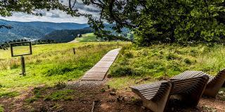 Ausblick über Todtmoos / Urheber: Tourist Information Todtmoos / Rechteinhaber: © Tourist Information Todtmoos