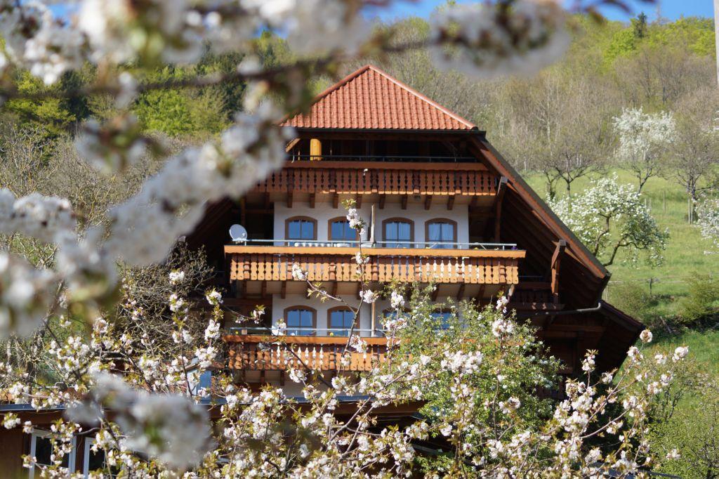 Ferienparadies Faißt, (Bad Peterstal-Griesba Ferienwohnung