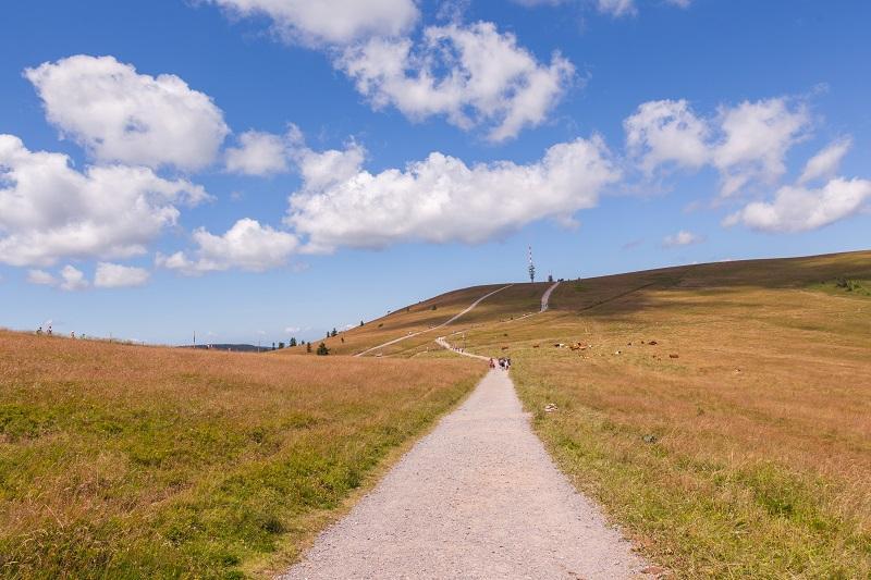 Erlebnis: 24 Stunden Powertrekking im Hochschwarzwald