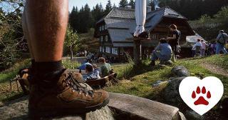 Zweitälersteig / Urheber: Original Landreisen AG / Rechteinhaber: © Original Landreisen AG