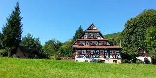Wandern im Nationalpark Schwarzwald / Urheber: Naturparkhotel Holzwurm / Rechteinhaber: © Naturparkhotel Holzwurm