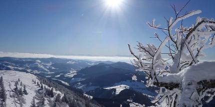 Schneeschuhwanderung: Tagestour am Belchen