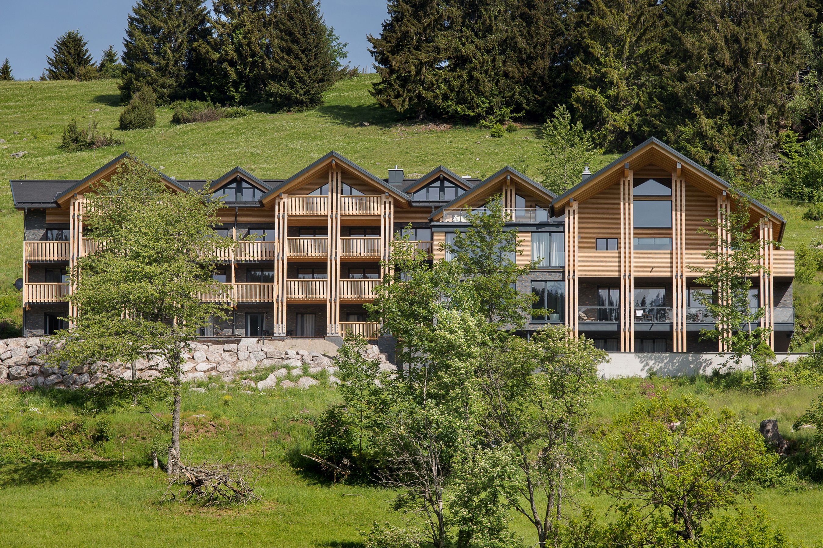 Black Forest Lodge, (Feldberg). Deluxe Lodge Apart Ferienwohnung  Schwarzwald