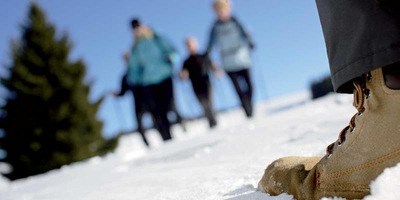 Winterwanderung: Hüttenabend mit traditionellem Krustenbraten