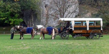 Erlebnisfahrt: Mit Pferd und Wagen zum UNESCO-Weltkulturerbe, Höhlen-Tour Blaubeuren