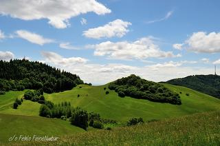Kaiserstuhl Landschaft / Urheber: Wilfried Breisacher / Rechteinhaber: © FeineNatur