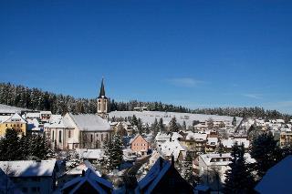 Schönwald im Winter