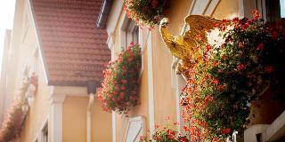 Hotel Adler / Urheber: Steudle´s Genusswelt GbR / Rechteinhaber: © Steudle´s Genusswelt GbR