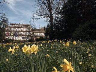 Balance-Hotel am Blauenwald (PAU)