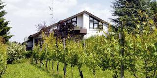 Appartement-Hotel im Weingarten (PAU)