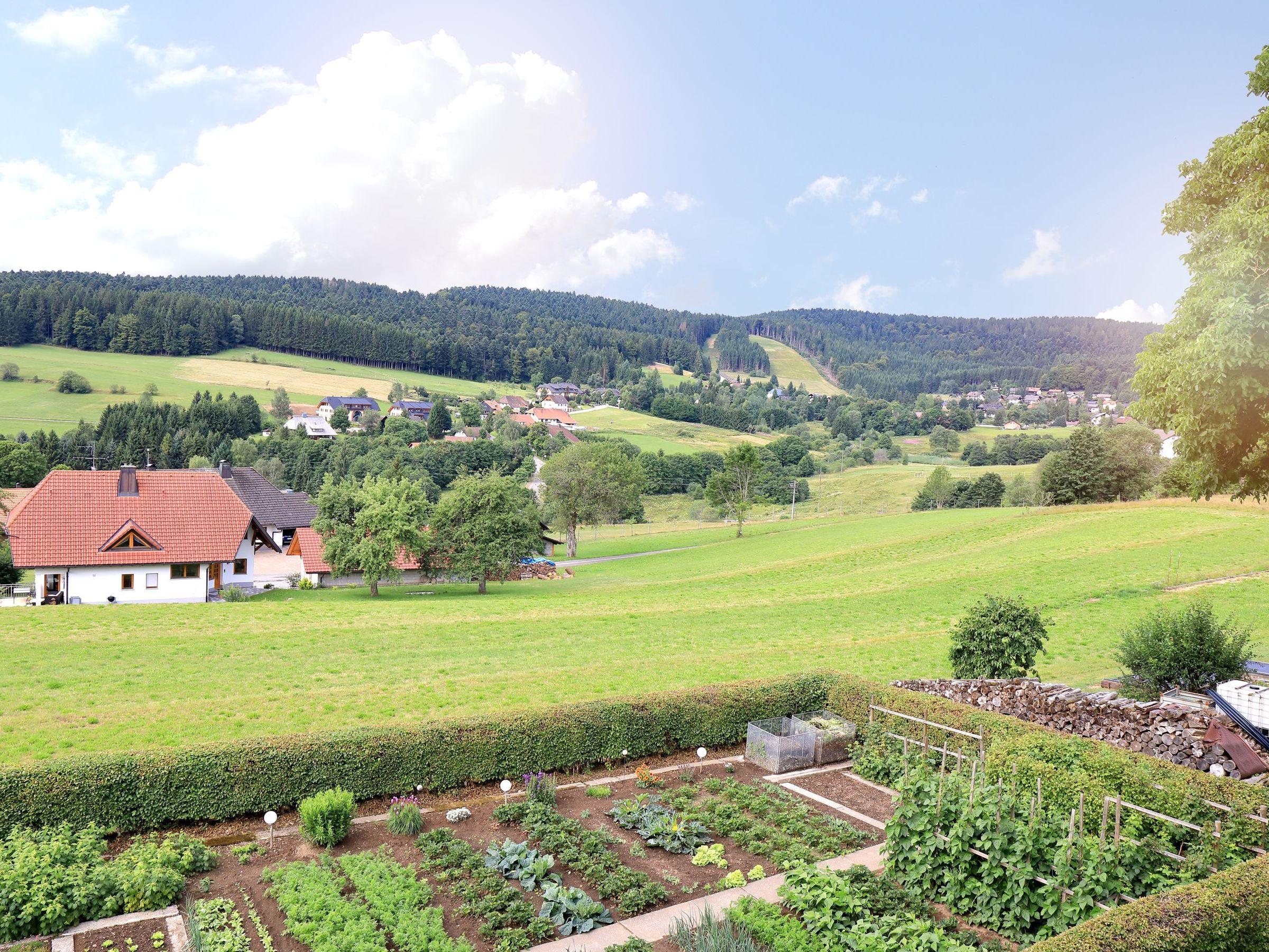 Ferienwohnung Haus Monika Ferienwohnungen, (Herrischried). Ferienwohnung Nr. 3, 62 qm, Balkon, 2 Schlafz (2299231), Herrischried, Schwarzwald, Baden-Württemberg, Deutschland, Bild 2