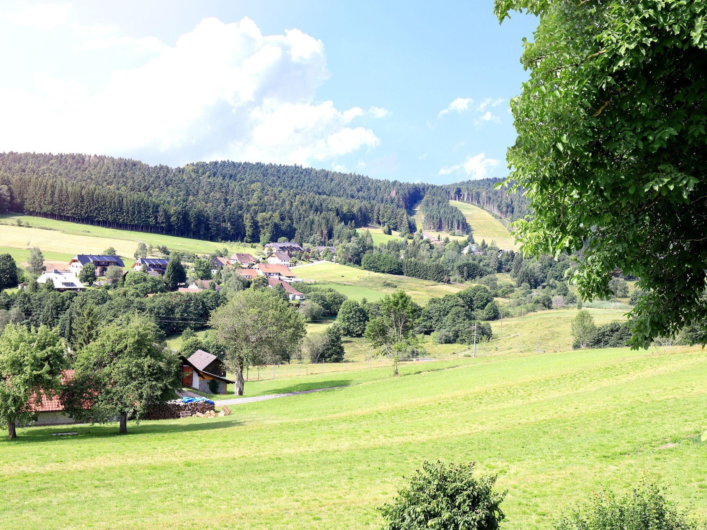 Ferienwohnung Haus Monika Ferienwohnungen, (Herrischried). Ferienwohnung Nr. 3, 62 qm, Balkon, 2 Schlafz (2299231), Herrischried, Schwarzwald, Baden-Württemberg, Deutschland, Bild 6