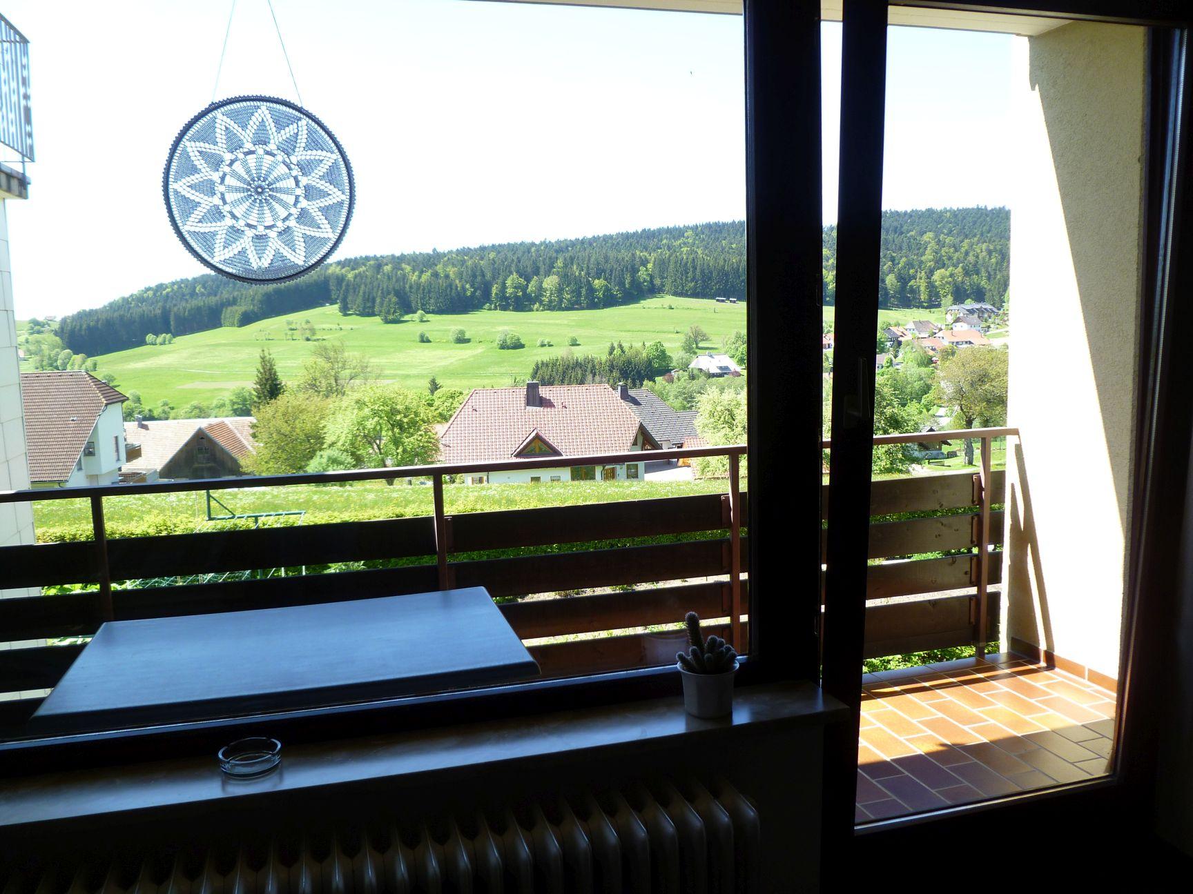 Ferienwohnung Haus Monika Ferienwohnungen, (Herrischried). Ferienwohnung Nr. 1, 38 qm, Balkon, 1 Wohn-/S (2299229), Herrischried, Schwarzwald, Baden-Württemberg, Deutschland, Bild 12