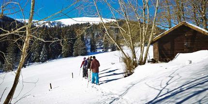 Schneeschuhwanderung: Große Feldberg-Runde