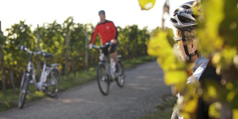 Kulinarische Radtour in vier Gängen rund um Überlingen