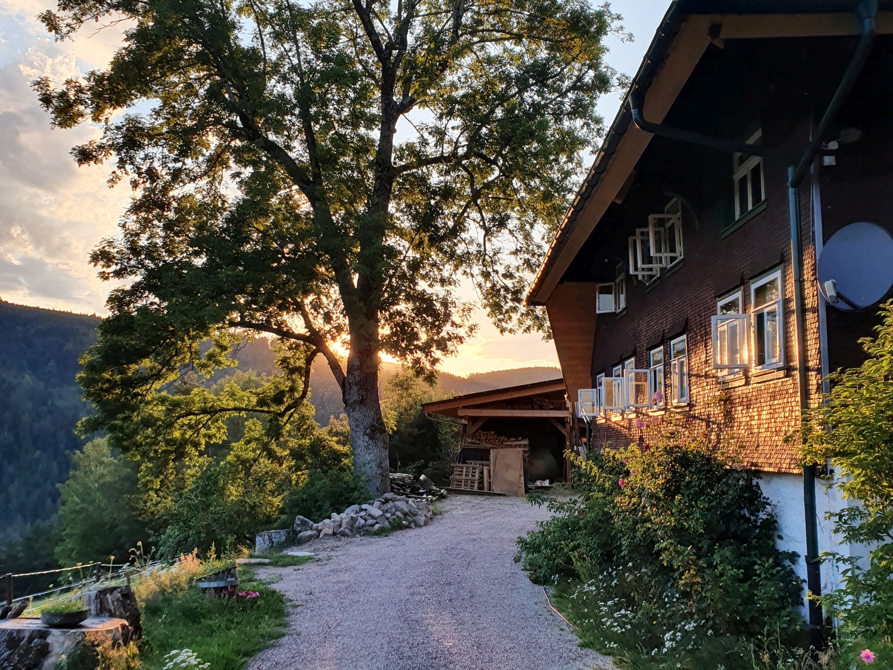 Feißesberghof, (Triberg). Ferienwohnung &quo Ferienwohnung  Schwarzwald