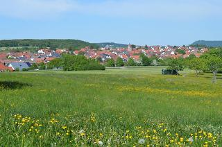 Blick auf Erkenbrechtsweiler