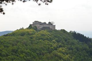 Blick auf Burg Hohenneuffen