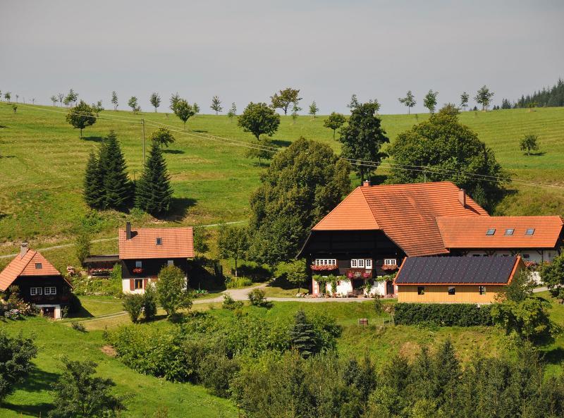 Huren aus Zell am Harmersbach