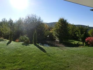 Blick von der Wohnung Richtung Garten