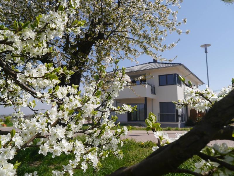 Ferienhaus-Lehmättle