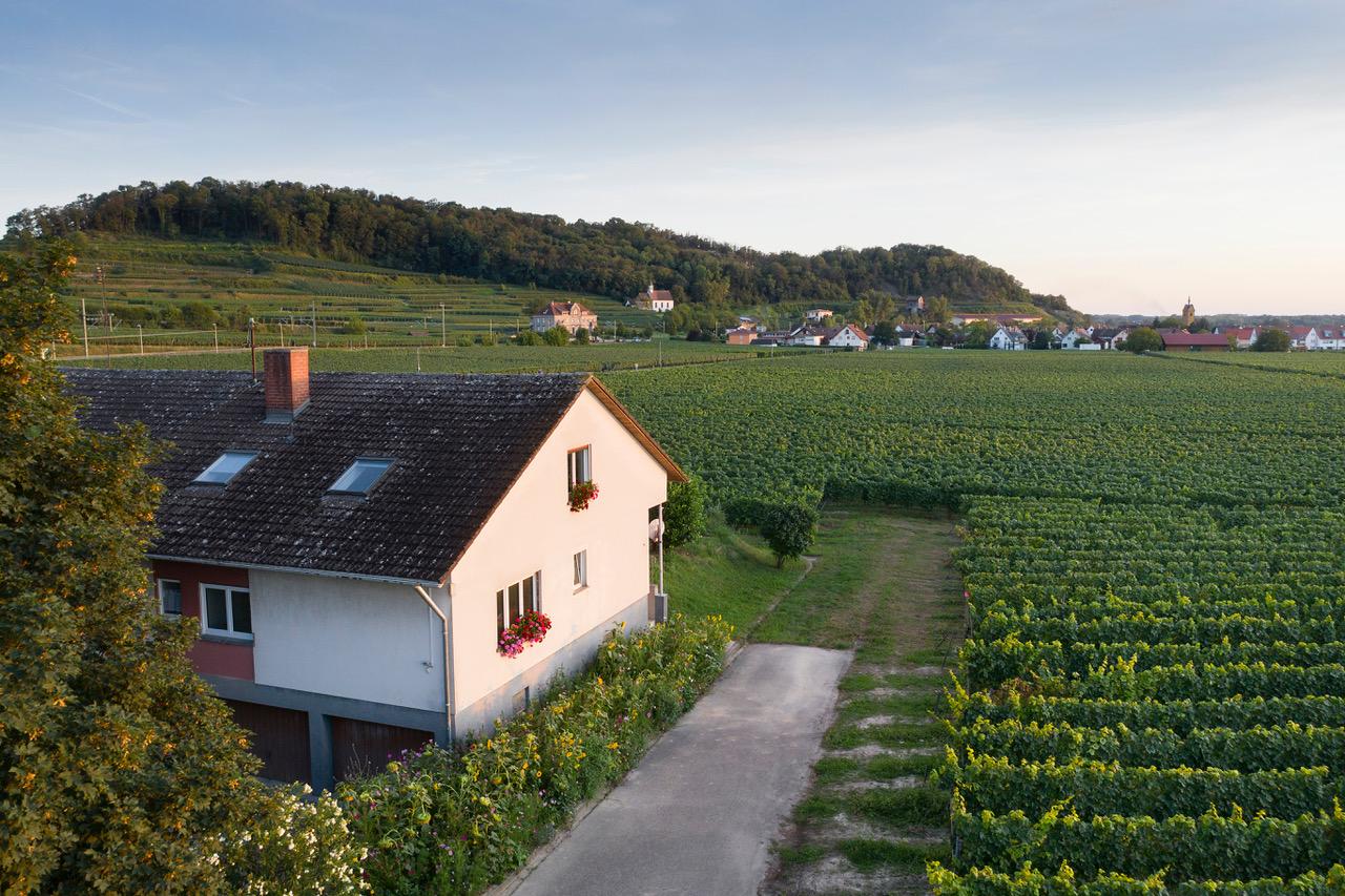 Winzerhof Henkenberg, (Vogtsburg). Ferienwohnung m Ferienwohnung  Schwarzwald