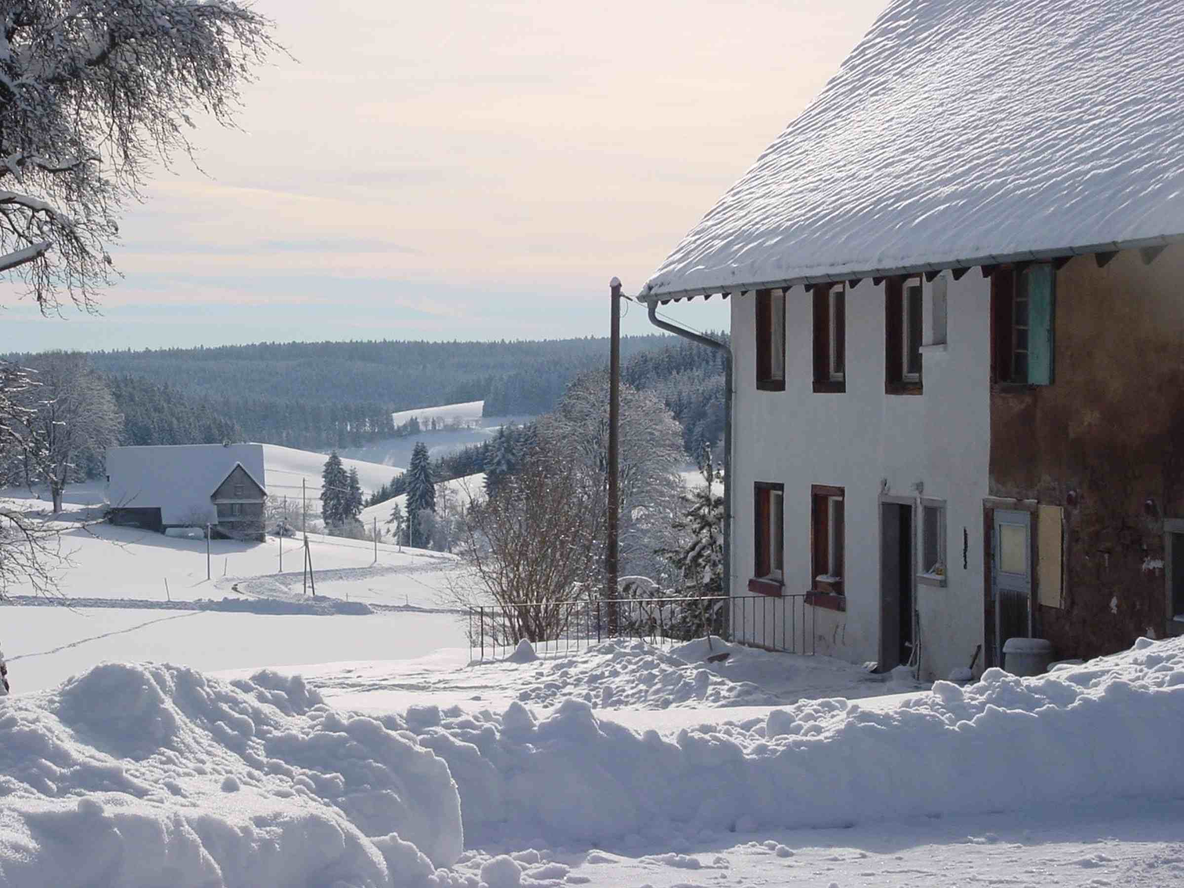 Ferienwohnung Storzenhof, (Unterkirnach). Ferienwohnung, 140qm, 3 Schlafzimmer, max. 8 Personen (2790199), Unterkirnach, Schwarzwald, Baden-Württemberg, Deutschland, Bild 7