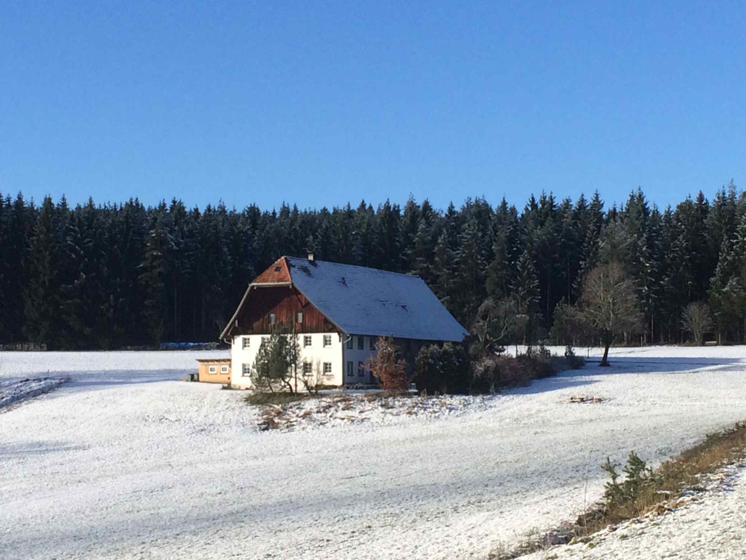 Ferienwohnung Storzenhof, (Unterkirnach). Ferienwohnung, 140qm, 3 Schlafzimmer, max. 8 Personen (2790199), Unterkirnach, Schwarzwald, Baden-Württemberg, Deutschland, Bild 11