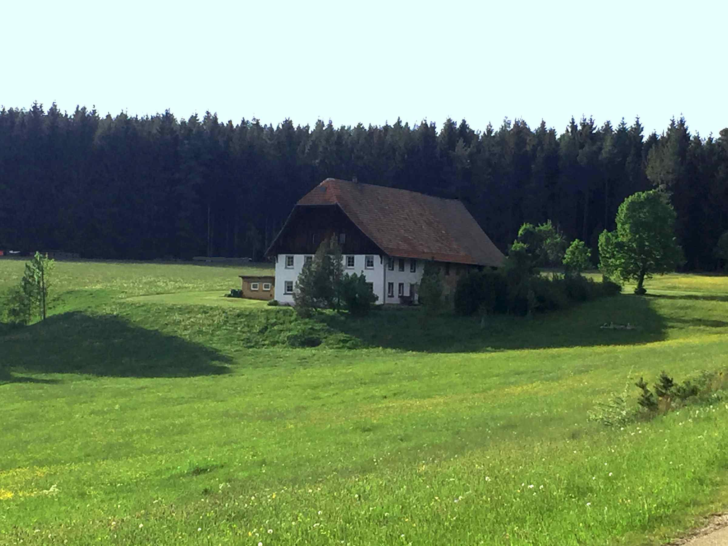 Ferienwohnung Storzenhof, (Unterkirnach). Ferienwohnung, 140qm, 3 Schlafzimmer, max. 8 Personen (2790199), Unterkirnach, Schwarzwald, Baden-Württemberg, Deutschland, Bild 16