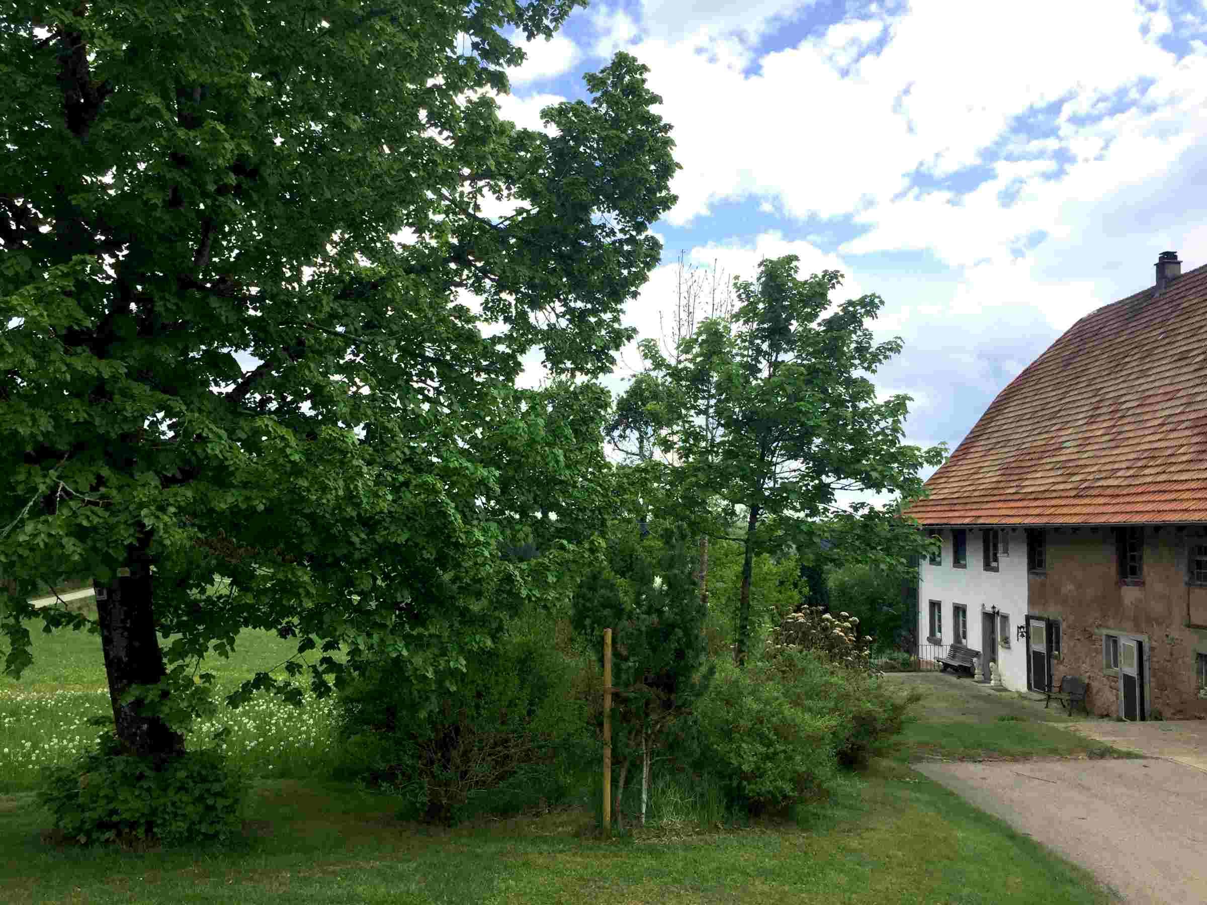 Ferienwohnung Storzenhof, (Unterkirnach). Ferienwohnung, 140qm, 3 Schlafzimmer, max. 8 Personen (2790199), Unterkirnach, Schwarzwald, Baden-Württemberg, Deutschland, Bild 29