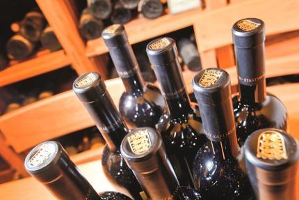 U 30 Weinseminar - for beginners - keine Angst vor Wein