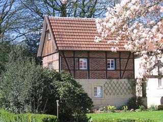 Seitenansicht der Alten Mühle im Frühjahr