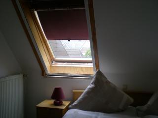 Mückengitter an einem Velux-Fenster