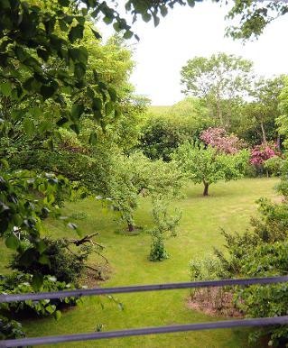 Der Deichhof: Toplicht mit Blick in den Garten und über den Seedeich!