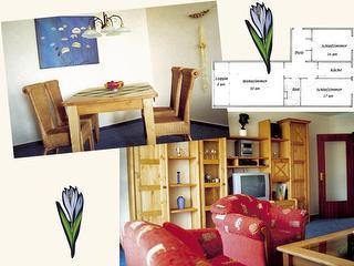 Bilder der Wohnung