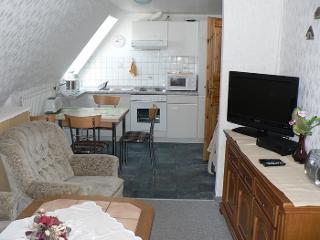Blick in den Wohnbereich und Küche
