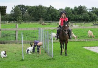 Ponyreiten für Kinder, Ferienwohng. Annemarie Clausen