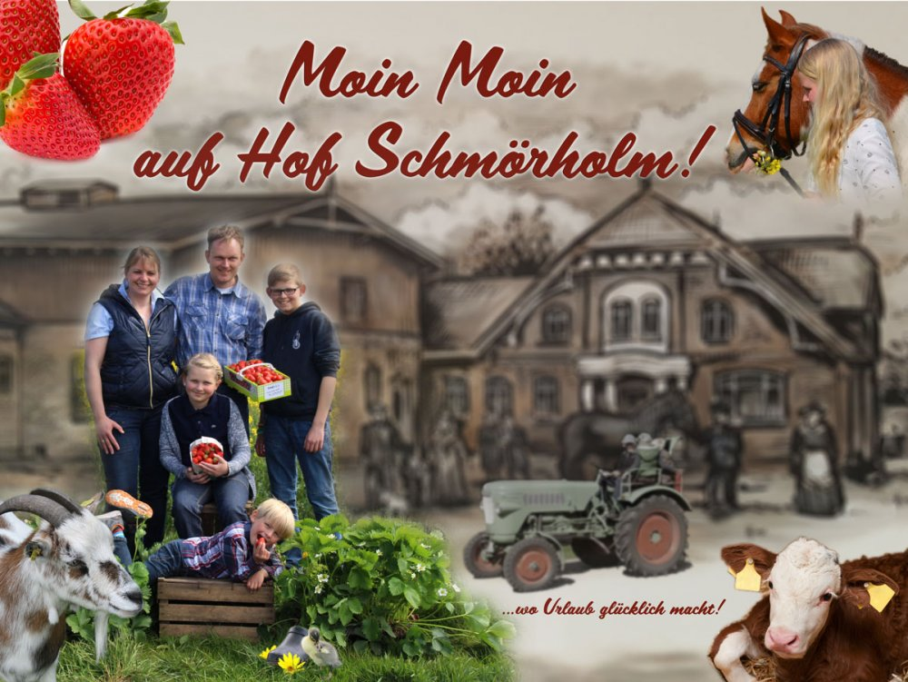 Hof Schmörholm (Leck). Erdbeerhuus Bauernhof