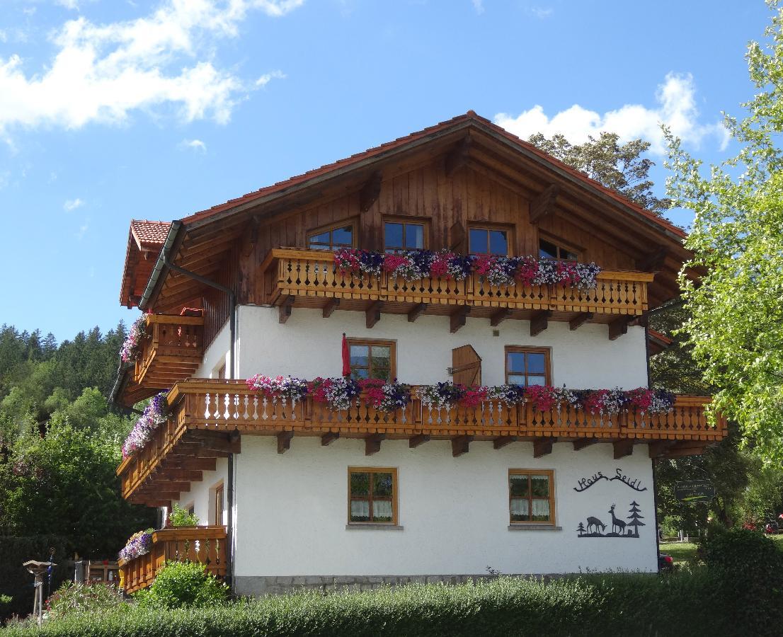 Ferienwohnung Haus Seidl (Bodenmais). Appartement mit Südbalkon (683803), Bodenmais, Bayerischer Wald, Bayern, Deutschland, Bild 3