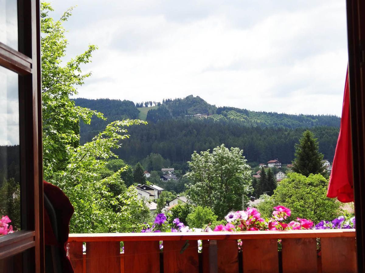 Ferienwohnung Haus Seidl (Bodenmais). Appartement mit Südbalkon (683803), Bodenmais, Bayerischer Wald, Bayern, Deutschland, Bild 6