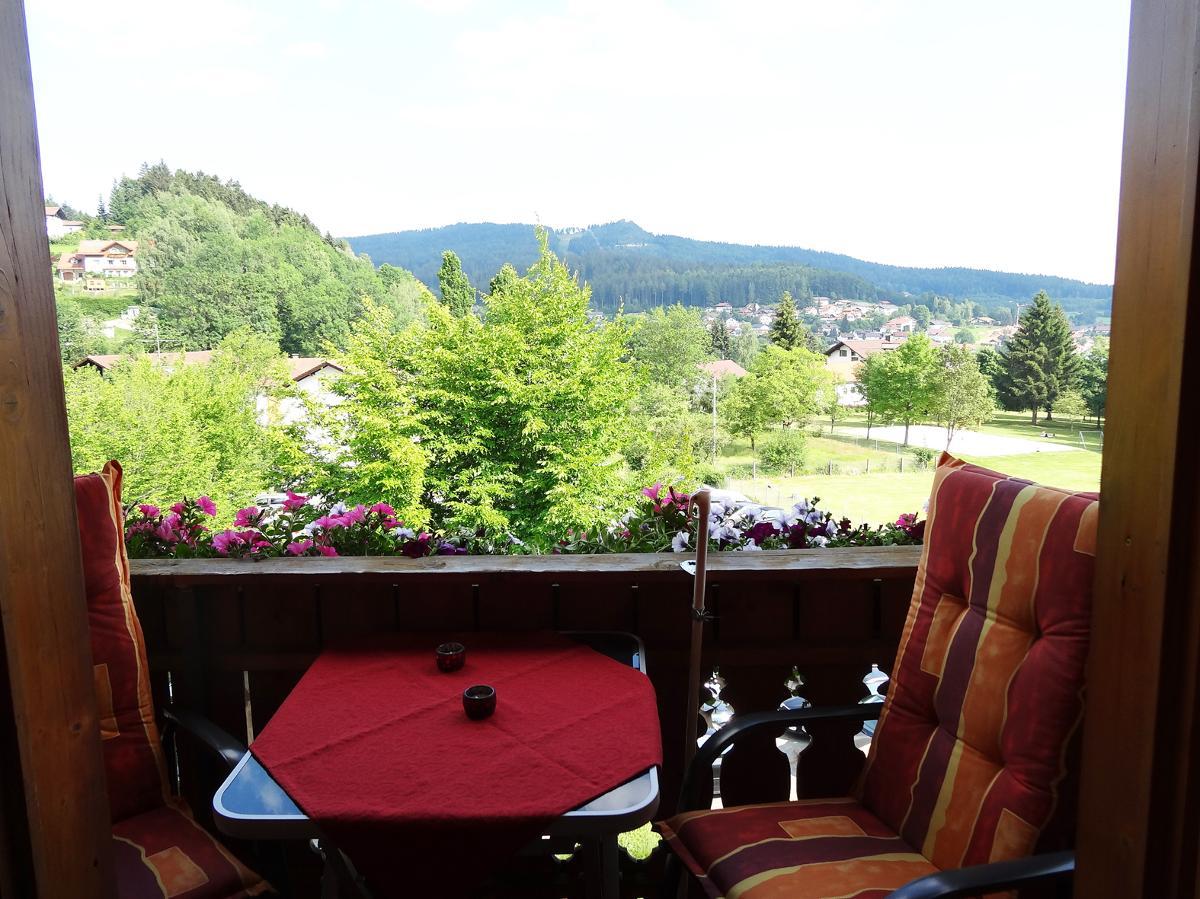 Ferienwohnung Haus Seidl (Bodenmais). Appartement mit Südbalkon (683803), Bodenmais, Bayerischer Wald, Bayern, Deutschland, Bild 10