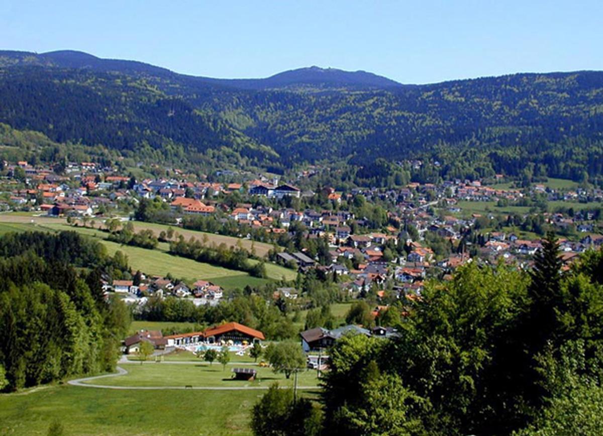 Ferienwohnung Haus Seidl (Bodenmais). Appartement mit Südbalkon (683803), Bodenmais, Bayerischer Wald, Bayern, Deutschland, Bild 19