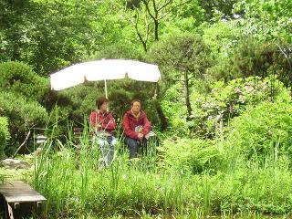 Sitzplatz im Garten am Teich .... ein Gartentraum!